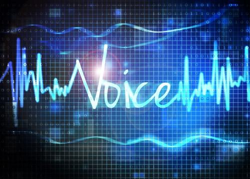 Voice Picking Bison