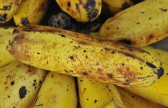 Kassationer Frukt Gront Bananer